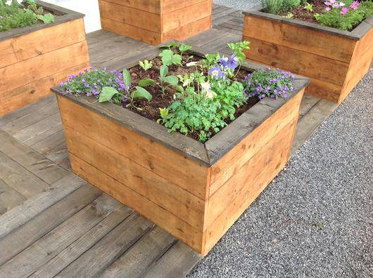 Achat carre potager bois for Carre jardin